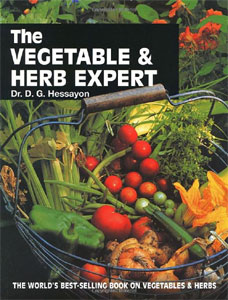 the-vegetable-herb-expert